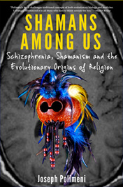 Purchase Shamans Among Us by Joseph Polimeni